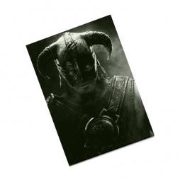 Обложка на паспорт Skyrim