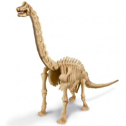 Набор для опытов 4M Раскопки динозавра. Брахиозавр